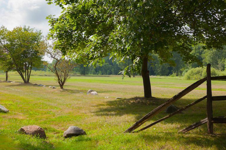 Swartz Creek Meadows
